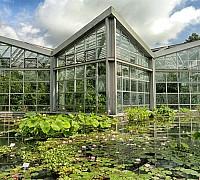 Frankfurti Botanikus kert