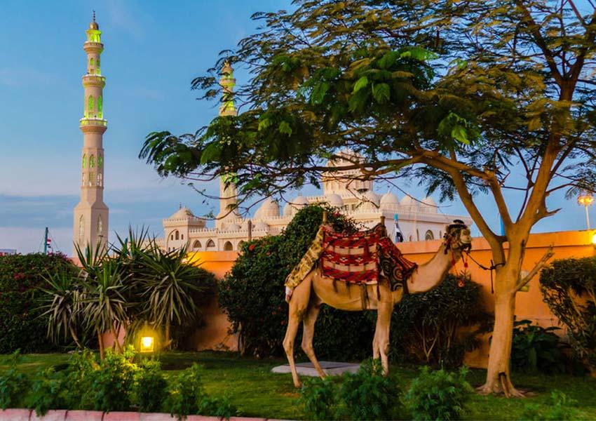 Egyiptom egyik legkedveltebb üdülővárosa, Hurghada